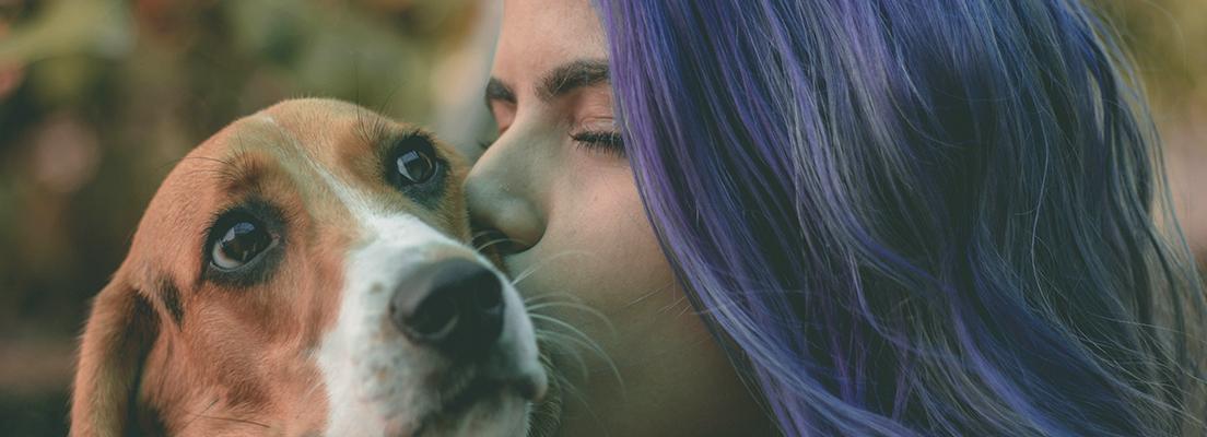 työvaatteet eläinlääkäreille ja eläinten hoitajille